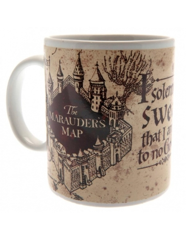 Pack Regalo Harry Potter taza +...