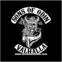 Camiseta Sons of Odin Valhalla (Vikings)