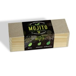 Kit Autocultivo Culinario Mojito, Menta, Albahaca y Hierbabuena