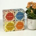 Kit Autocultivo TACOS  Brotes de cilantro y girasol